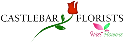 Castlebar Flowers